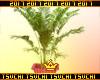 🍣Doll gang plant
