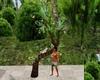 B. SH2020 palm tree/bird