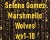 Selena Gomez/Marshmello