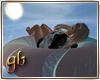 Blue island Swim ring