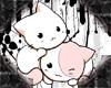 [DR]kitten love