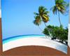 Panorama Beach Backdrop