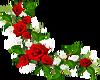 Flowers Bottom Left