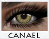 [CNL]Eye unisex sorrel 5