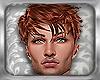 ~E- WOT Aiel Hair Red