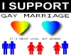 I SUPPORT GAY MARRAIGE