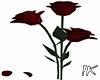 lK Rose Red Animated