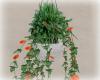 [Luv] IH - Hanging Plant