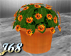 J68 Potted Plant Orange