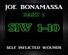 Joe B.~ Self Inflicted 1