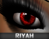 !R  Celebrity Eyes DJINN