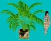 NYE PLANT 2020