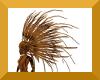 anyskin feather hair