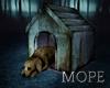 Abandoned  DogHause