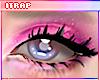 🎨 EyeShadow | TED