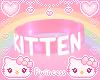 ♡ kitten choker