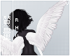 . Cupid   Wings