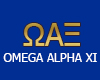 Omega Alpha xi (Sweater)