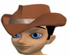 **SA71**DarkTan hat
