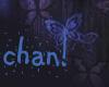 !Chan Silver Wht Veil