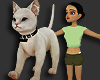 Cat for AVI F