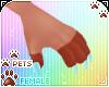 [Pets] Cinda | claws