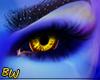 Genie Eyes - B