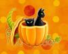 ~Nx~ Halloween Cat 5