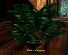 UPSCALE COUNTRY PLANT 3