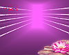 ★ Pink Tunnel