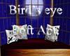 Birds Eye Loft Apt