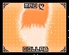 ღ|Orange Foxii Tail
