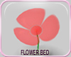 MLM Daisy Patch Red