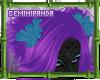 ;GP; Abli Hair Poms