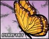 (*Par*) Mon. Butterfly R
