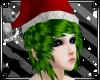 Christmas Santa Green