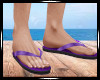 Purple Flip Flops