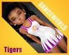 Hattiesburg Tigers 3