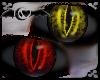 Red & Gold Black Eyes