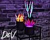 !D Neon Cacti