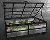 ☠ Mari's Greenhouse