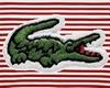 [JD] Alligator Polo
