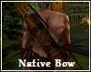 Native Bow & Arrow