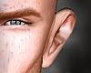 BB Ears f