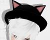 .Cat Hat :3