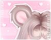 F. GummyBear Ears Cake