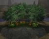 (T)Secret Garden
