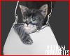 VD'CatBag