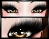 ~<3 Cute Azn Lashes ~<3