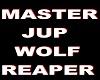 Master Jup sticker